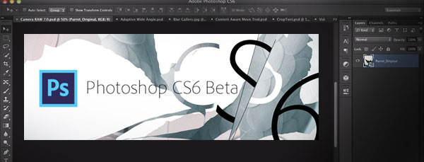 adobe_photoshop_beta_CS6