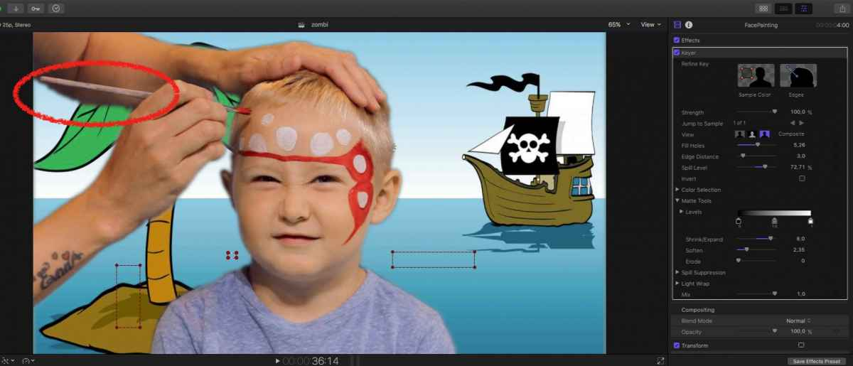 pirat5.jpg